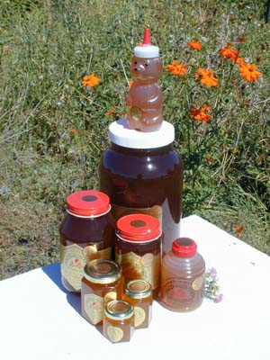 Honey 3 lb. Quart Glass Jar - San Francisco Bay Area Blend